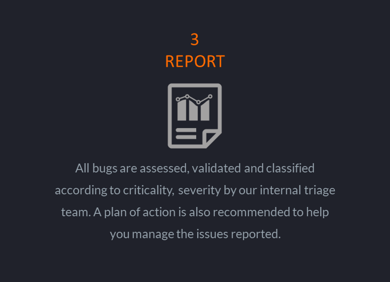 bug_bounty_report